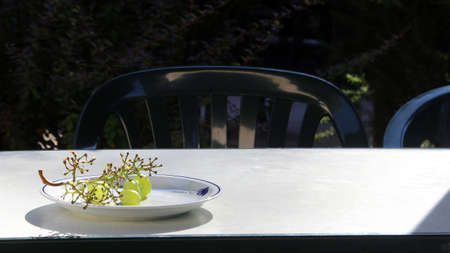 Photo of a picturesque still life depicting half-eaten juicy green grapes on a white plate on a white table in the garden
