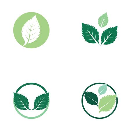 set of mint leaves flat vector color icon template