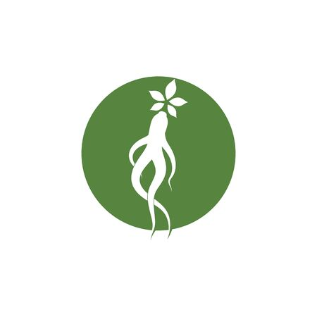 Ginseng icon Vector Illustration design   template
