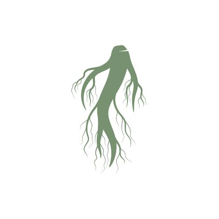 Ginseng icon Vector Illustration design Logo template  イラスト・ベクター素材