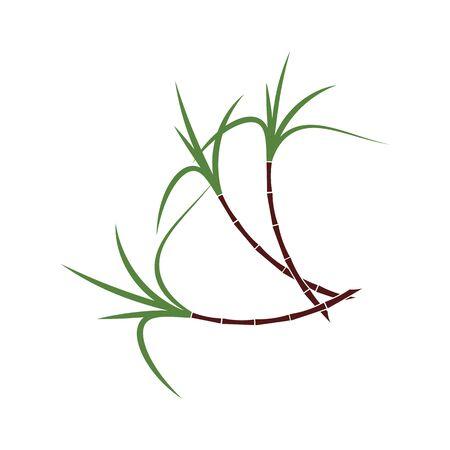 Sugar cane Logo Template vector symbol nature Illustration
