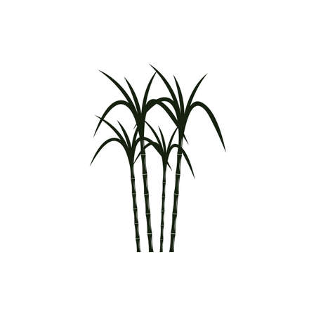 Sugar cane Logo Template vector symbol nature