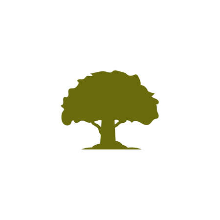 Cedar tree vector icon illustration design template