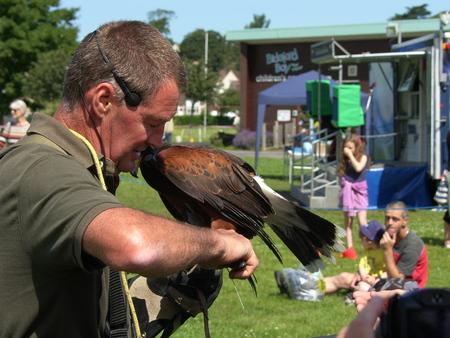 war bird: Bideford Heritage day 2014