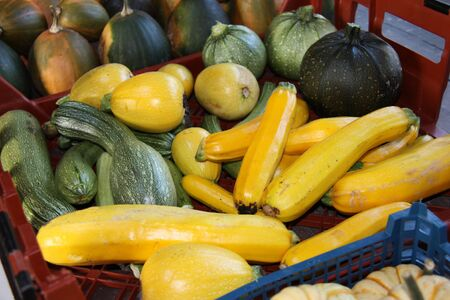 courgettes: A Mixed Collection of Freshly Picked Courgettes.