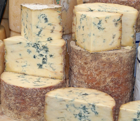 A Display of a Classic Blue Vein Cheese. photo