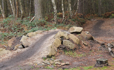 obstacle: A Man Made Obstacle on a Woodland Cycle Track. Stock Photo