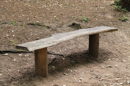 Marvelous A Plain Wooden Bench In A Woodland Clearing Gmtry Best Dining Table And Chair Ideas Images Gmtryco