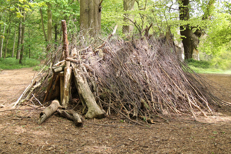 bivouac: A Woodland Shelter Made from Twigs and Logs.