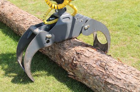 logger: A Powerful Tree Logger Lifting Crane Jib Device. Stock Photo