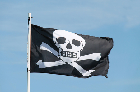 swashbuckler: A Black and White Skull and Cross Bones Pirate Flag.