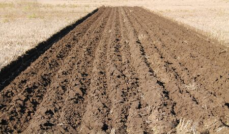 recently: The Recently Ploughed Furrows of a Farming Field.