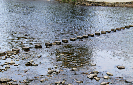 stepping: A Row of Stepping Stones Across a Shallow River.
