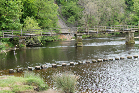 stepping: A Set of Stepping Stones and a River Wooden Bridge.