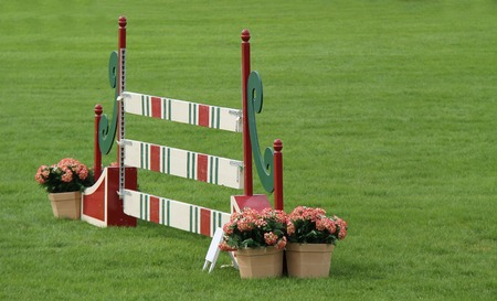jumping fence: Una valla de madera para el caballo de salto.