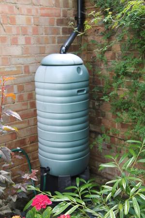 small butt: A Rainfall Water Butt in the Corner of a Small Garden.