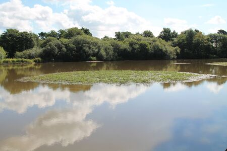 A Quiet Lake with a Scrape Island for Bird Wildlife.