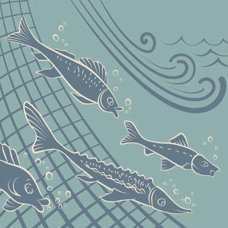 様々 な種類の魚の密猟者の網からの脱出