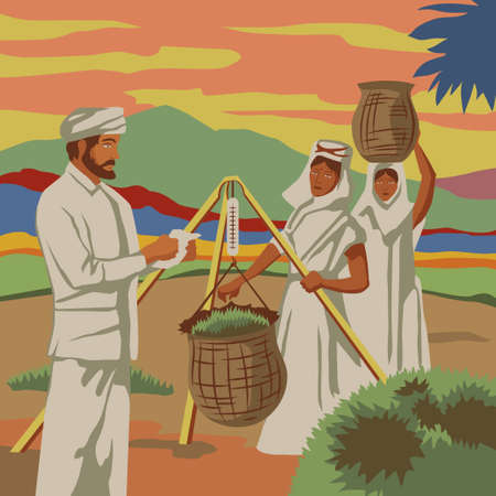 tea basket: Indian women picking tea and giving it to british colonizers Illustration
