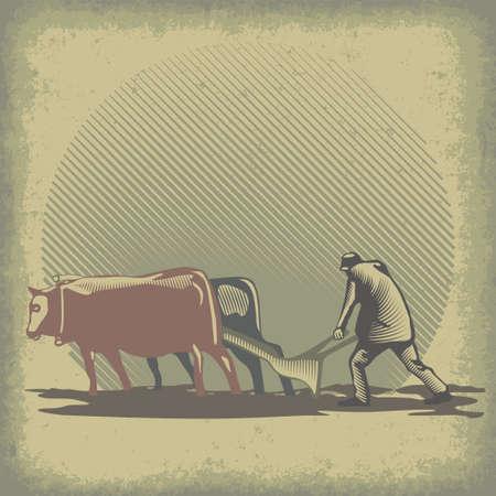 arando: Hombre arando la tierra usando rastra y toros ilustración vectorial Vectores