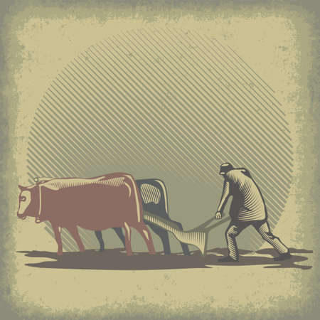 Man plowing the land using harrow and bulls vector illustration