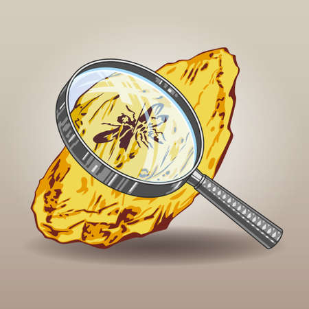 Piece of amber with insects preserving for hundreds of thousands of years viewing through a magnifying glass vector illustration