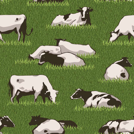 herd: Herd of cows seamless color pattern with standing, lying, relaxing and nipping the green grass stylized cows in different poses vector illustration