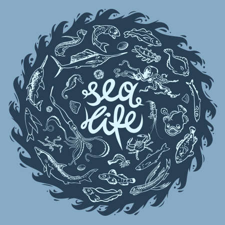 Hand drawn vector set of various sea and ocean inhabitants. Fishes, shark, octopus, poulpe, swordfish, narwhal, lobster, flying fish, shrimp, chum graphic symbols. Underwater life marine collection