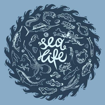 plancton: Vectores dibujados a mano conjunto de diversos mares y océanos habitantes. Peces, tiburón, pulpo, poulpe, el pez espada, el narval, langosta, pescado, camarones, chum símbolos gráficos volar. Colección de la vida marina bajo el agua Vectores