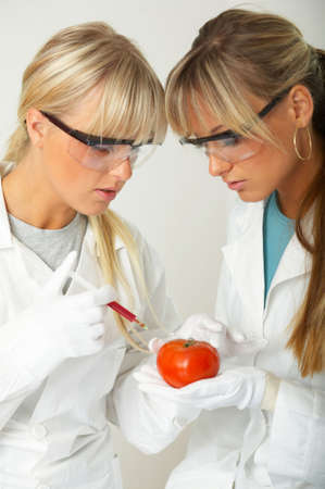 modifying: Female scientists injecting liquid into a tomato
