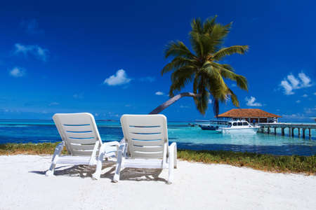 resort: Two sun beds on beautiful beach at Maldives