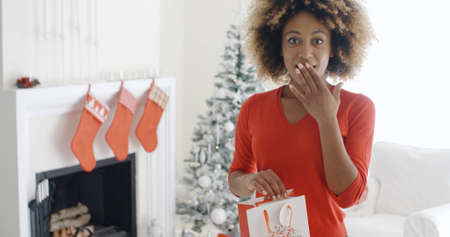 wide eyed: Astonished young woman holding a Christmas gift bag in her hand looking wide eyed at the camera with her hand to her mouth Stock Photo
