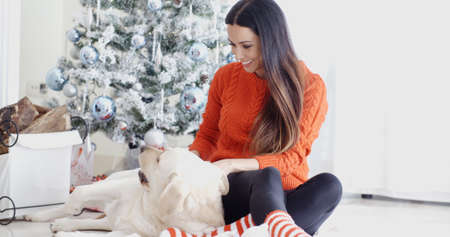 mujer perro: Laughing young woman with her dog at Christmas sitting together on the floor in front of the tree as she strokes its back