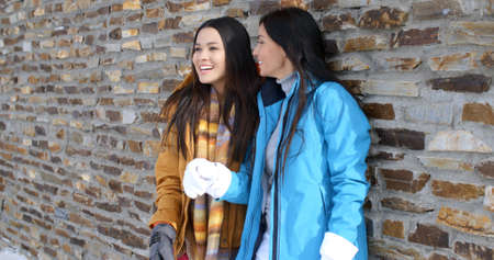 adult wall: Adorable adult female twins laughing in ski jackets  scarf and gloves near brick wall outdoors