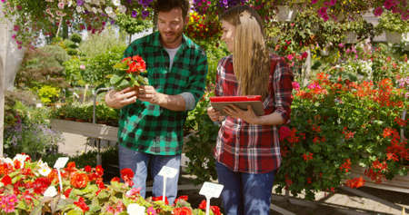 Professional male gardener standing in garden and showing plant to woman doing paperwork. Stock fotó