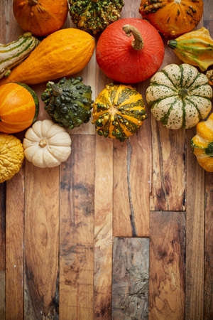 Autumn background. Small multi colored pumpkins on a wooden table. Top view, with copy space for banner and thanksgiving concept.