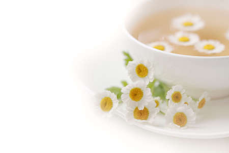 camomiles: Cup with tea of chamomile on white background Stock Photo