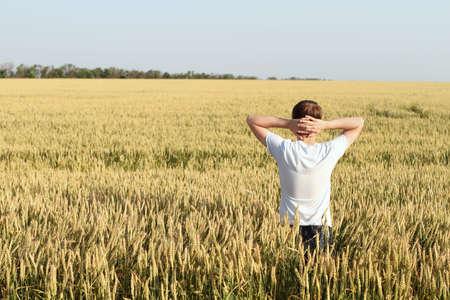 Man in wheat field joying sunset photo
