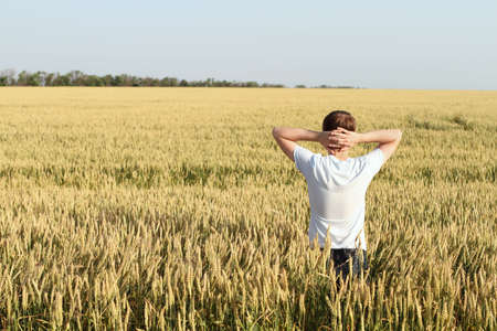 field sunset: Man in wheat field joying sunset