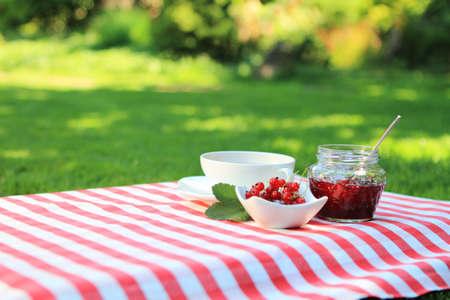 红醋栗果酱和茶在夏天庭院里
