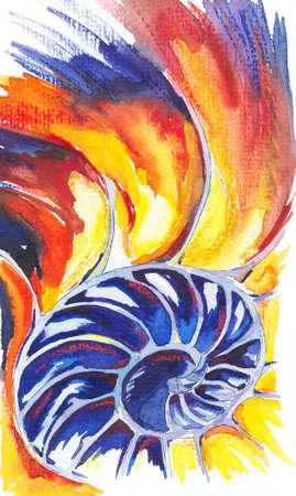 nautilus shell: Close up of the Nautilus Shell. Watercolors drawing Stock Photo