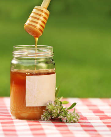 Jar of honey  with mother-of-thyme against nature background Stock Photo