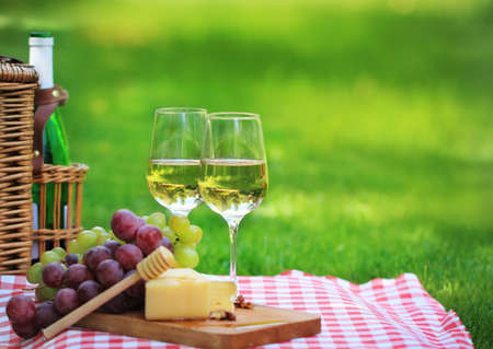 Various sorts of cheese, grapes and two glasses of the white wine Stock Photo - 9685605