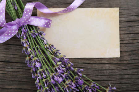Fresh lavender decorated with ribbon over wooden background photo