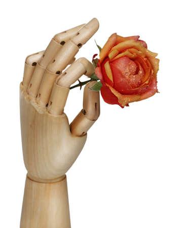 artificial flower: Wooden robot hand holding rose flower over white Stock Photo