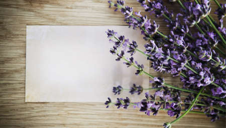 Lavender flowers over wooden background with blank photo