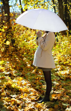 abdomen yellow jacket: Young pregnant woman under umbrella in autumn forest