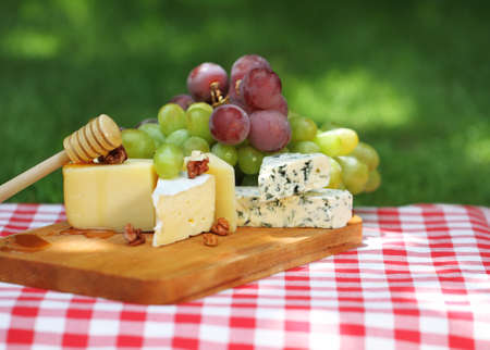 sorts: Various sorts of cheese with grapes outdoor