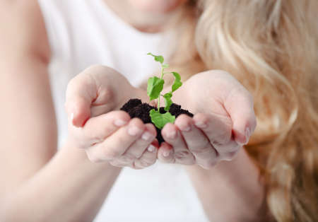 Young woman holding young plant in her hands. Shallow depth of field Stock Photo - 12285169