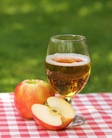 Apple cider and apples on the summer picnic photo